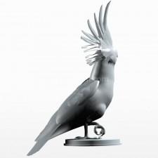 07葵花鹦鹉 鸟类 动物 3D模型