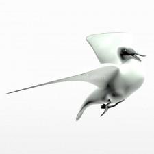 飞 野鸭子 鸟类 动物 3d模型