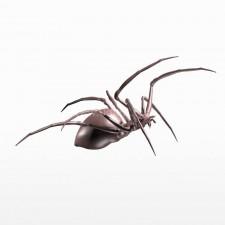 战斗 球型蜘蛛 昆虫 动物 3d模型