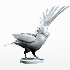 06葵花鹦鹉 鸟类 动物 3D模型 obj文件