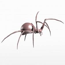 行进 球型蜘蛛 昆虫 动物 3d模型