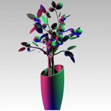 植物00081新