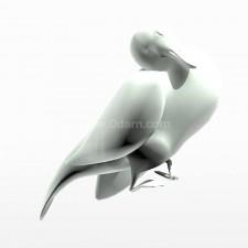 睡 野鸭子 鸟类 动物 3d模型