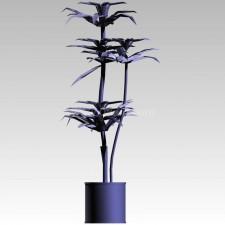 植物00103新