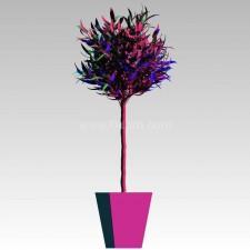 植物00138新