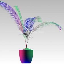植物00054新