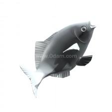 跃 鲫鱼 鱼类 动物 3d模型