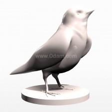 01麻雀 鸟类 动物 3D模型 obj文件