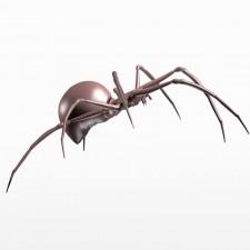 奋进 球型蜘蛛 昆虫 动物 3d模型