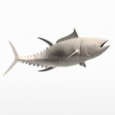 上游 蓝鳍金枪鱼 鱼类 动物