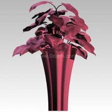 植物00124新