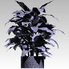 植物00022新