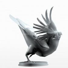 08葵花鹦鹉 鸟类 动物 3D模型