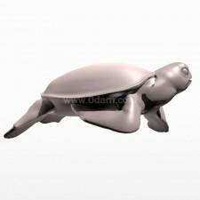 爬 海龟 鱼类 动物 3d模型