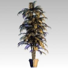 植物00139新