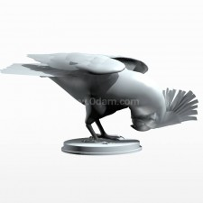 05葵花鹦鹉 鸟类 动物 3D模型 obj文件