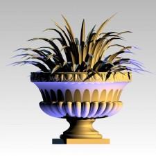 植物00203新