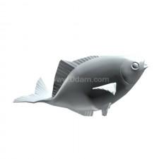 食 鲫鱼 鱼类 动物 3d模型