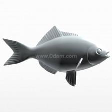 正姿 鲫鱼 鱼类 动物 3d模型