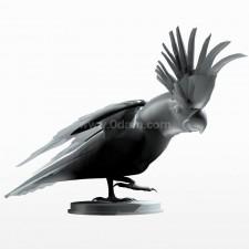 02葵花鹦鹉 鸟类 动物 3D模型