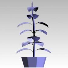 植物00216新