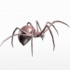 吃 球型蜘蛛 昆虫 动物 3d模型