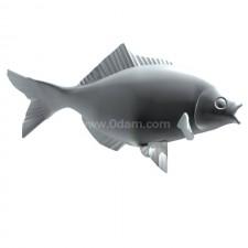 吃 鲫鱼 鱼类 动物 3d模型