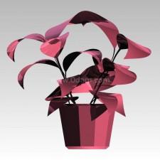 植物00185新