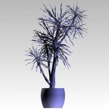 植物00248新