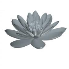 睡莲03 水生植物 3D模型