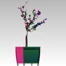 植物00050新