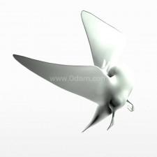 奋飞 野鸭子 鸟类 动物 3d模型