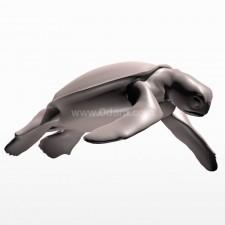 寻 海龟 鱼类 动物 3d模型
